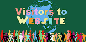 Organic Visitors to Your Website
