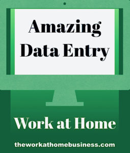 Amazing Data Entry Work at Home