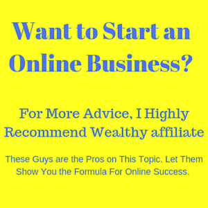 Want to Start an Online Business?