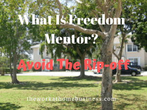 What Is Freedom Mentor