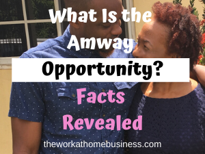 What Is the Amway Opportunity